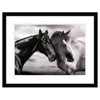 Mellow Meadow Horse Portrait By Jorge Llovet - Framed Print