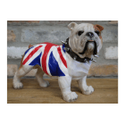 Life Size English Bulldog Puppy Statue Union Jack