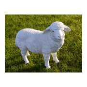 Standing Sheep Statue Ornament
